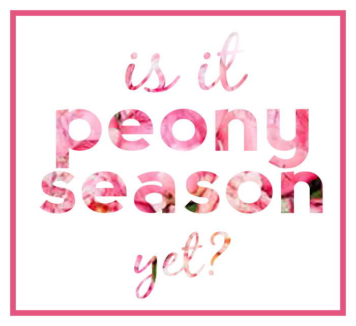 Is It Peony Season Yet? Print | dcgirlinpearls.com