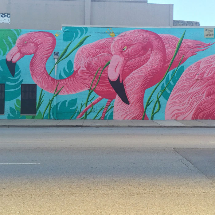Flamingo Mural in Chicago