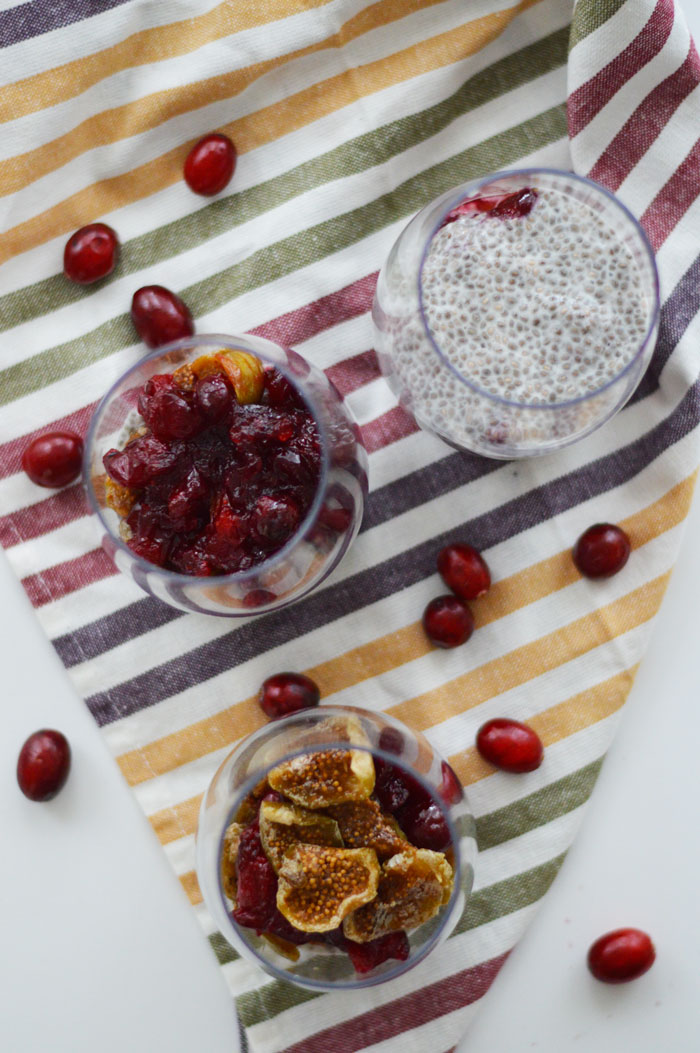 Fig Cranberry Chia Pudding | dcgirlinpearls.com