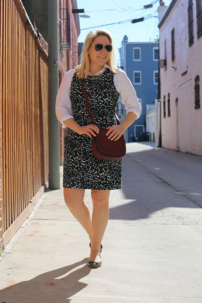 Leopard Dress for Work | @dcgirlinpearls