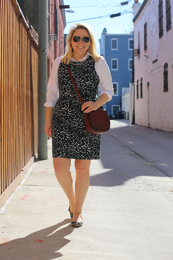 Leopard Dress | @dcgirlinpearls