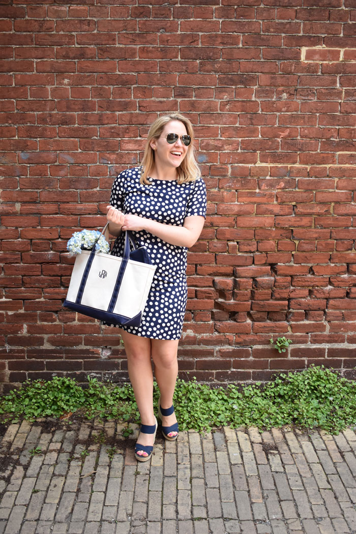 JCrew Factory Gallery Dress | @dcgirlinpearls