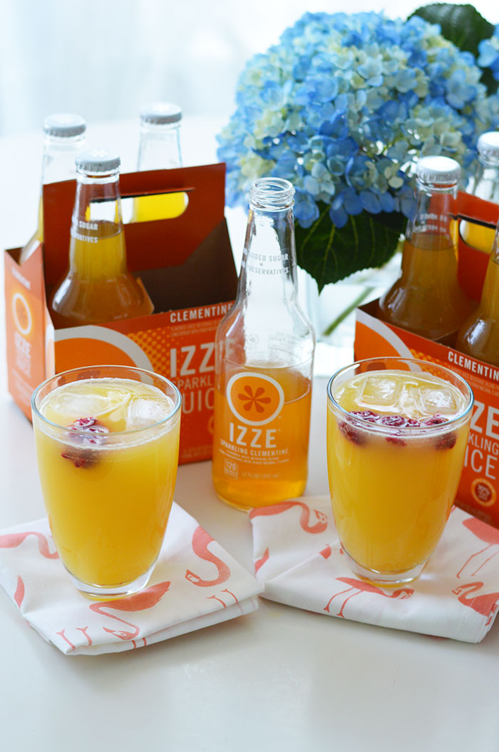 National Friendship Day IZZE | @dcgirlinpearls